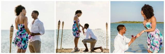 J&M the proposal